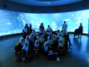 Year 7A Excursion: Melbourne Aquarium