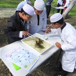 Hifz Students learning about our local Creek