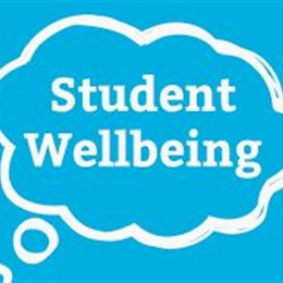 Student Wellbeing Support