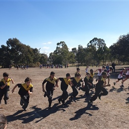 Year 5-6: Cross Country Race