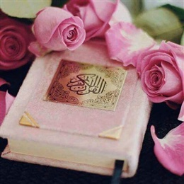 Ladies Online Qur'an Program