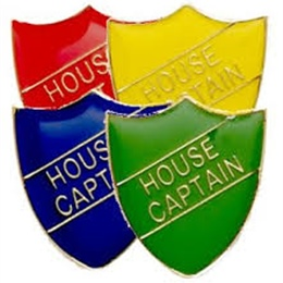 Introducing Our 2019 House Captains